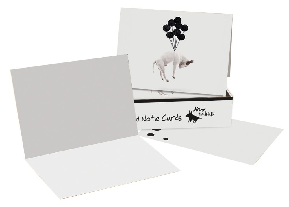 Jimmy-The-Bull-Balloon-Boxed-Note-Cards-2