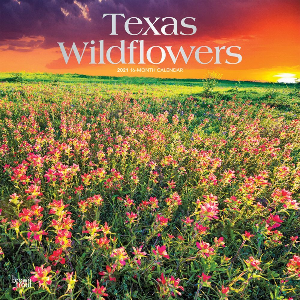 Texas Wildflowers 2021 Wall Calendar