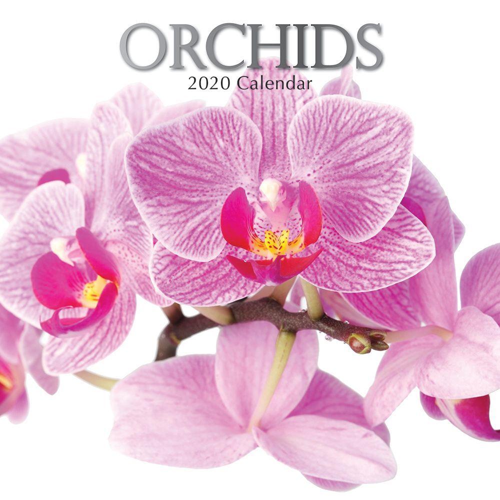 Orchids 2021 Wall Calendar
