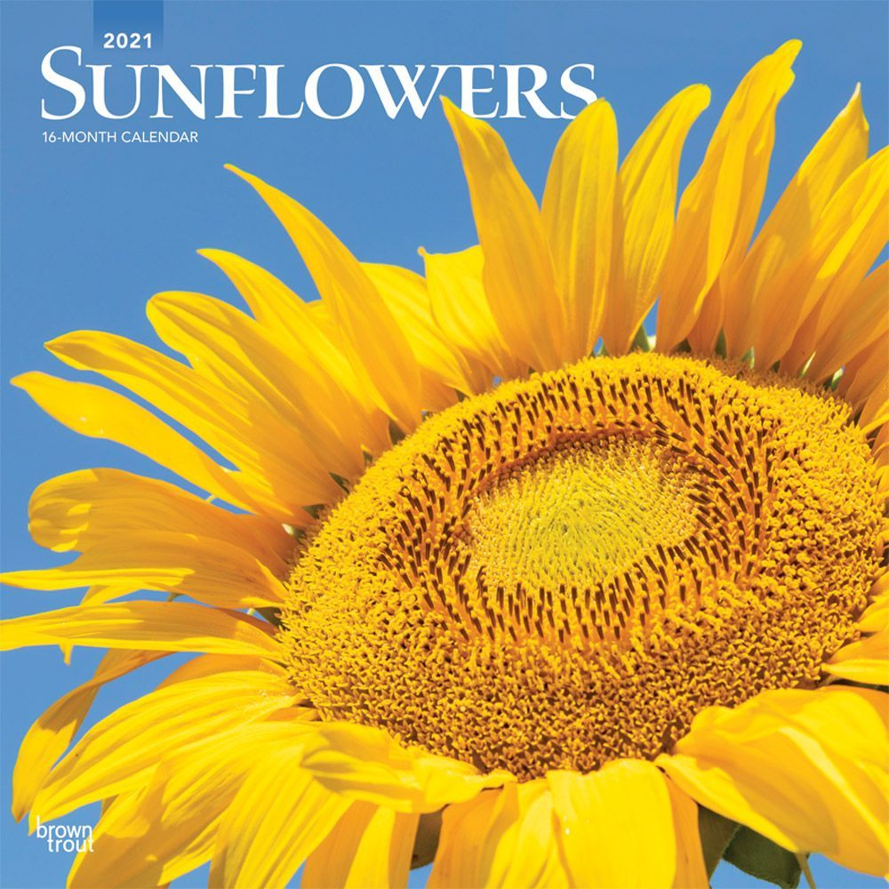 2021 Sunflowers Wall Calendar