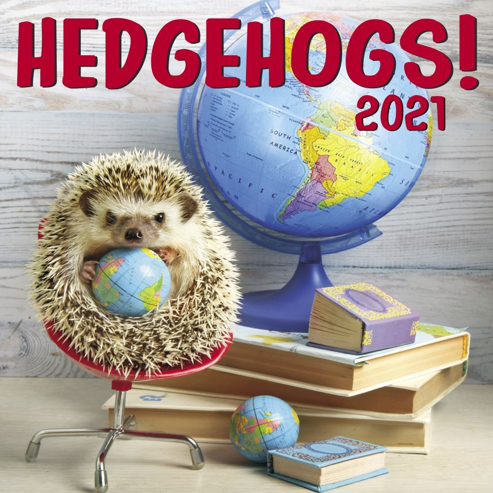 2021 Hedgehogs Wall Calendar