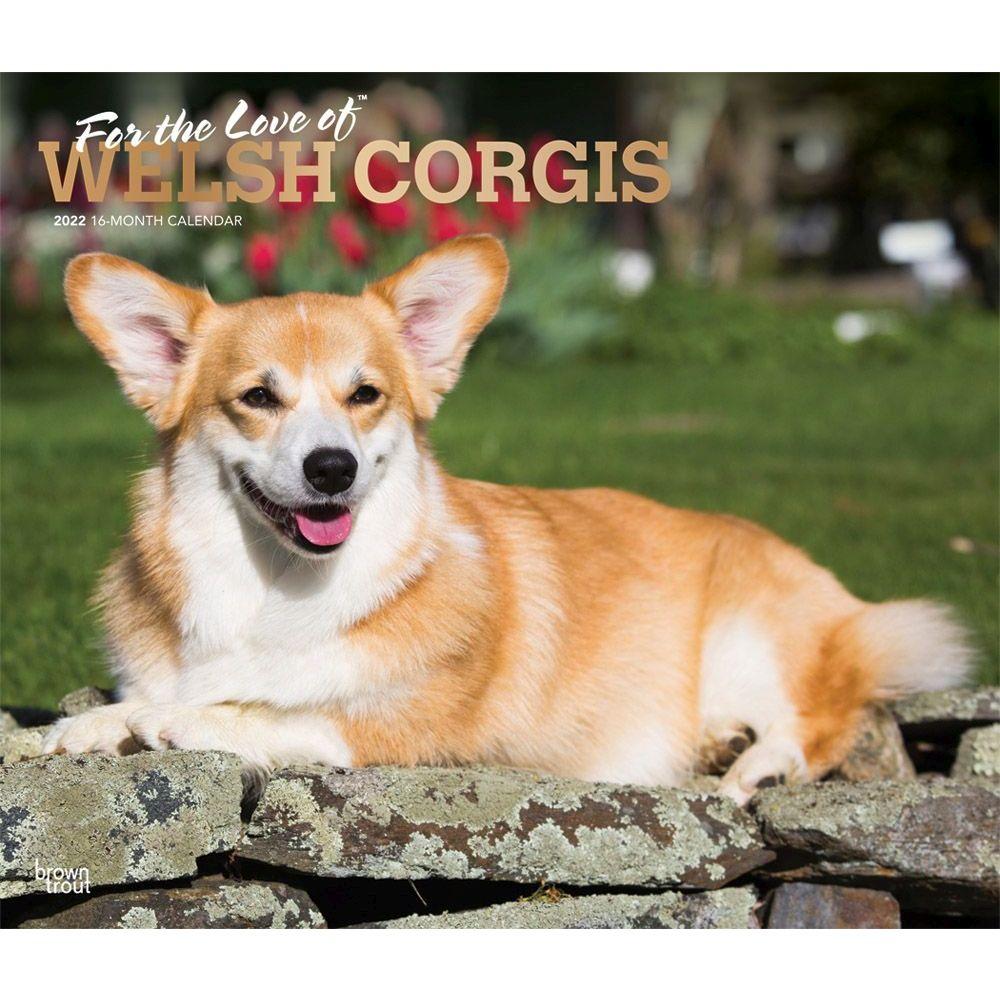 Welsh Corgis 2022 Deluxe Wall Calendar