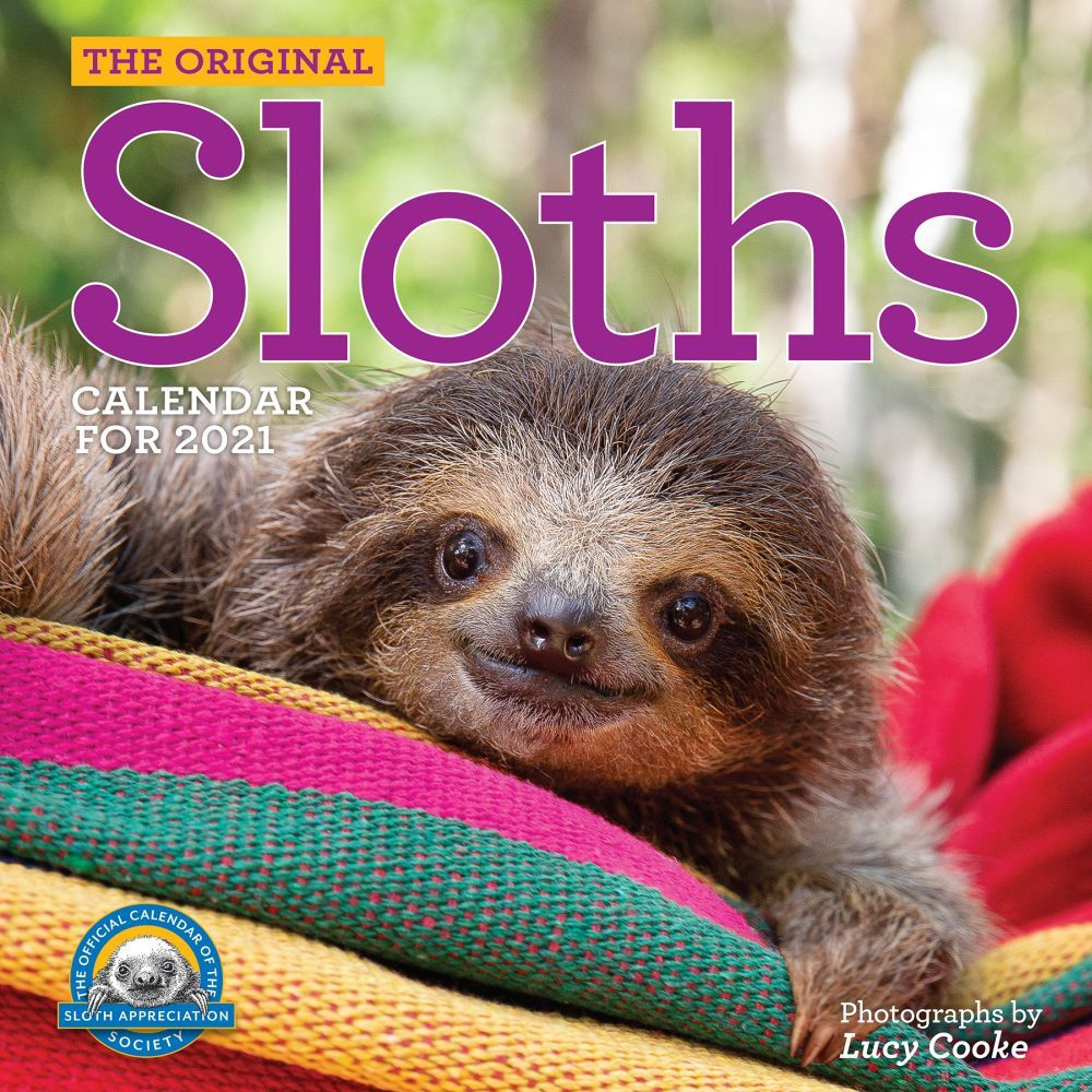 2021 Hanging With Sloths Wall Calendar