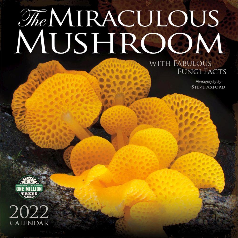 Miraculous Mushroom 2022 Wall Calendar