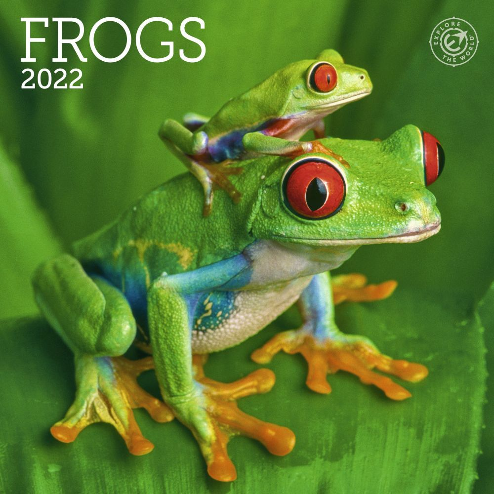 Frogs 2022 Mini Wall Calendar