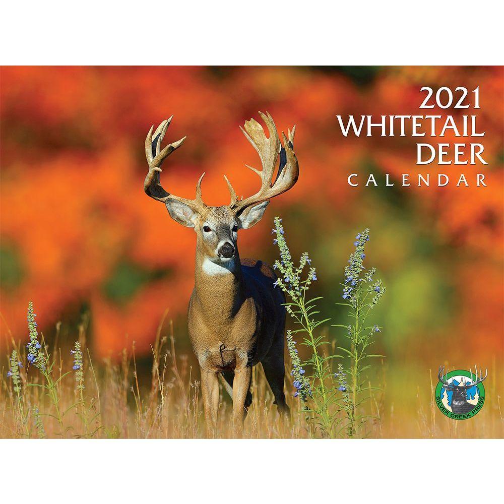2021 Deer Whitetail Wall Calendar