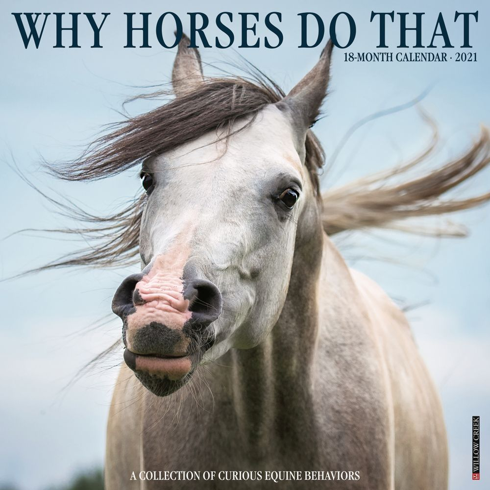 2021 Why Horses Do That Wall Calendar