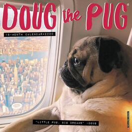 Doug the Pug Wall Calendar