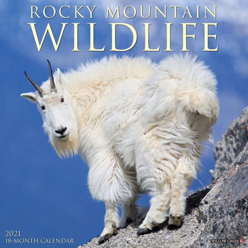 Rocky Mountain Wildlife 2021 Wall Calendar