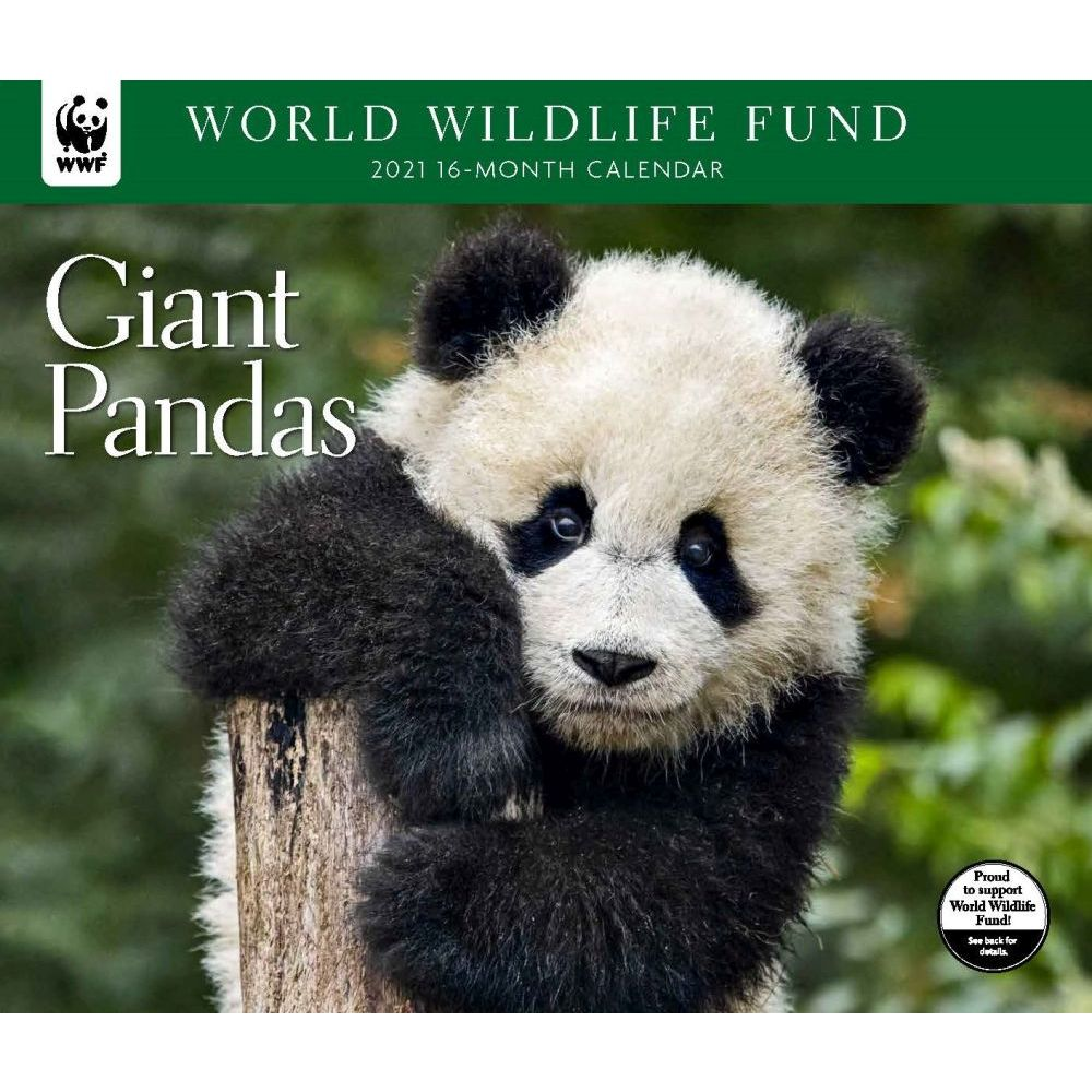 2021 Giant Pandas WWF Wall Calendar
