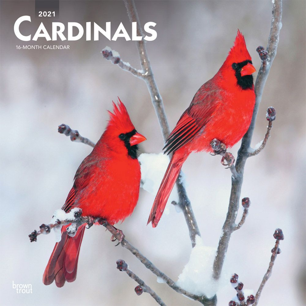2021 Cardinals Wall Calendar