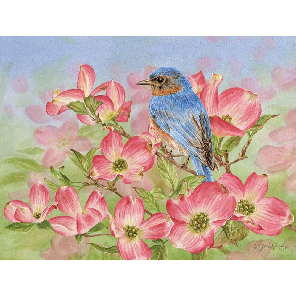 "Bluebird-of-Happiness-5.25""-x-4""-Blank-Boxed-Cards-1"