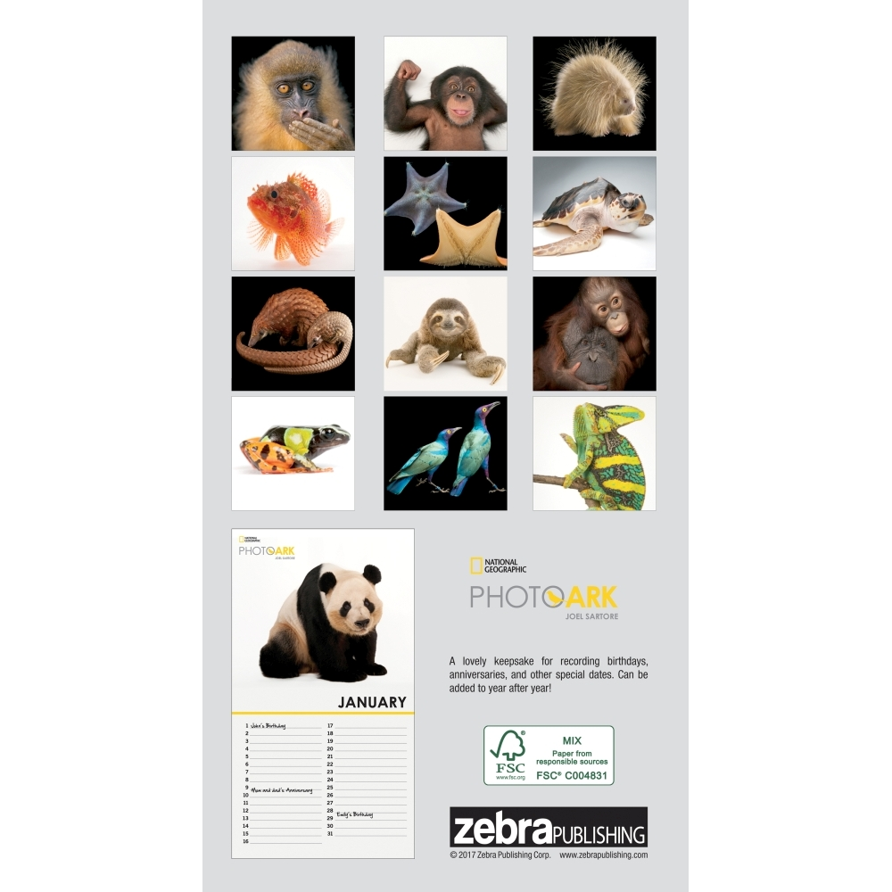 Photo-Ark-Mini-Wall-Calendar-2