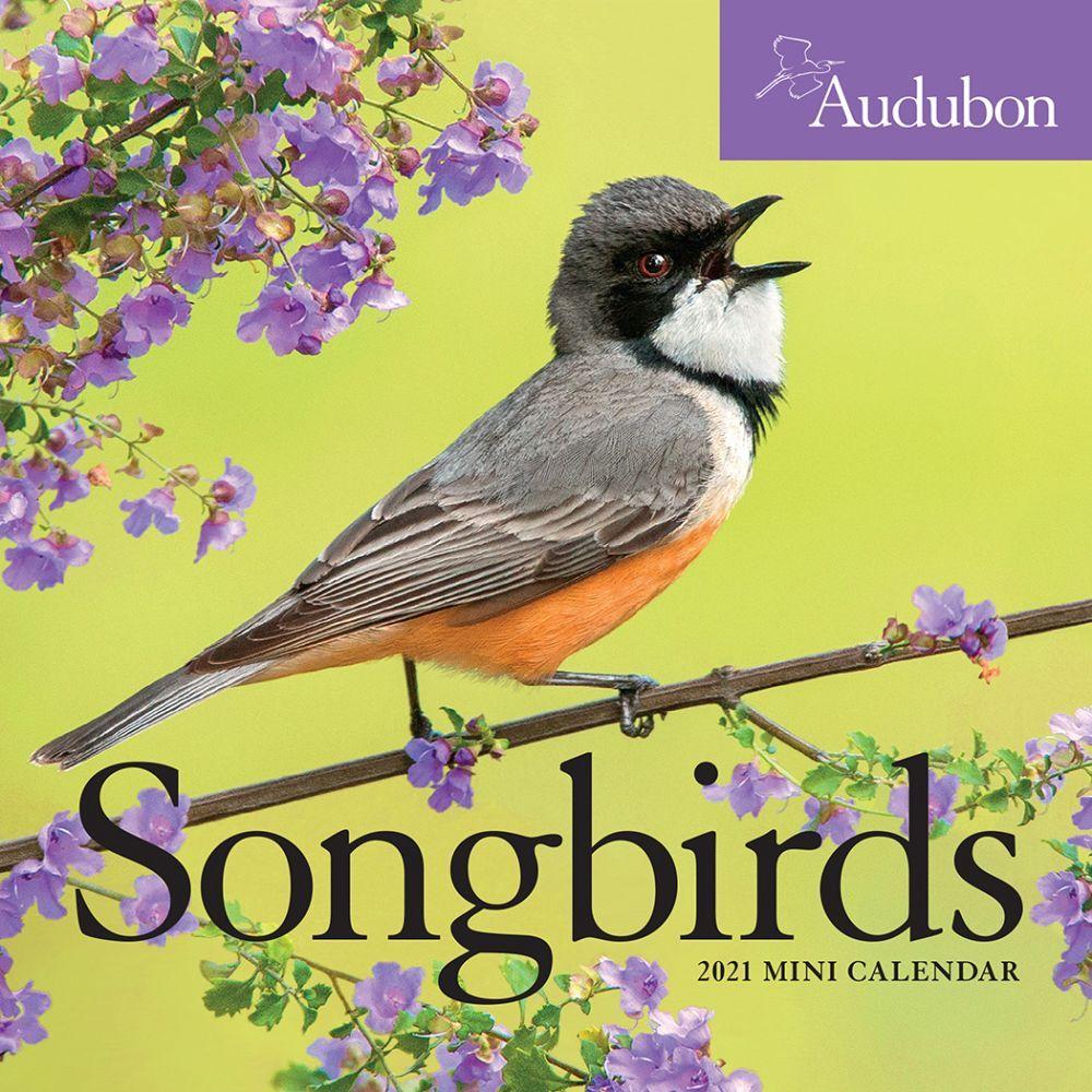 2021 Audubon Sweet Songbirds Mini Wall Calendar