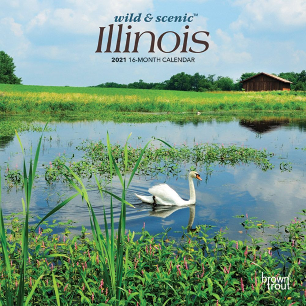 Illinois 2021 Mini Calendar