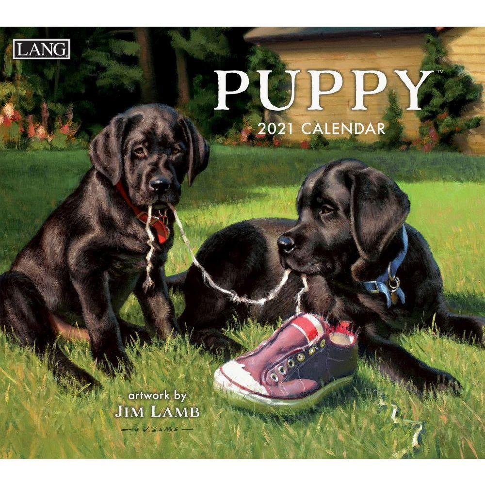 2021 Puppy Wall Calendar by Jim Lamb