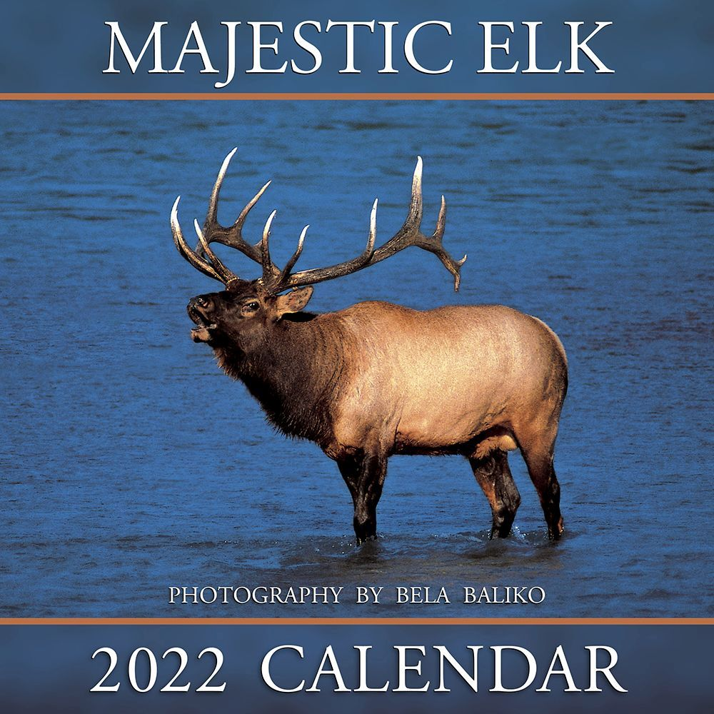 Majestic Elk 2022 Wall Calendar