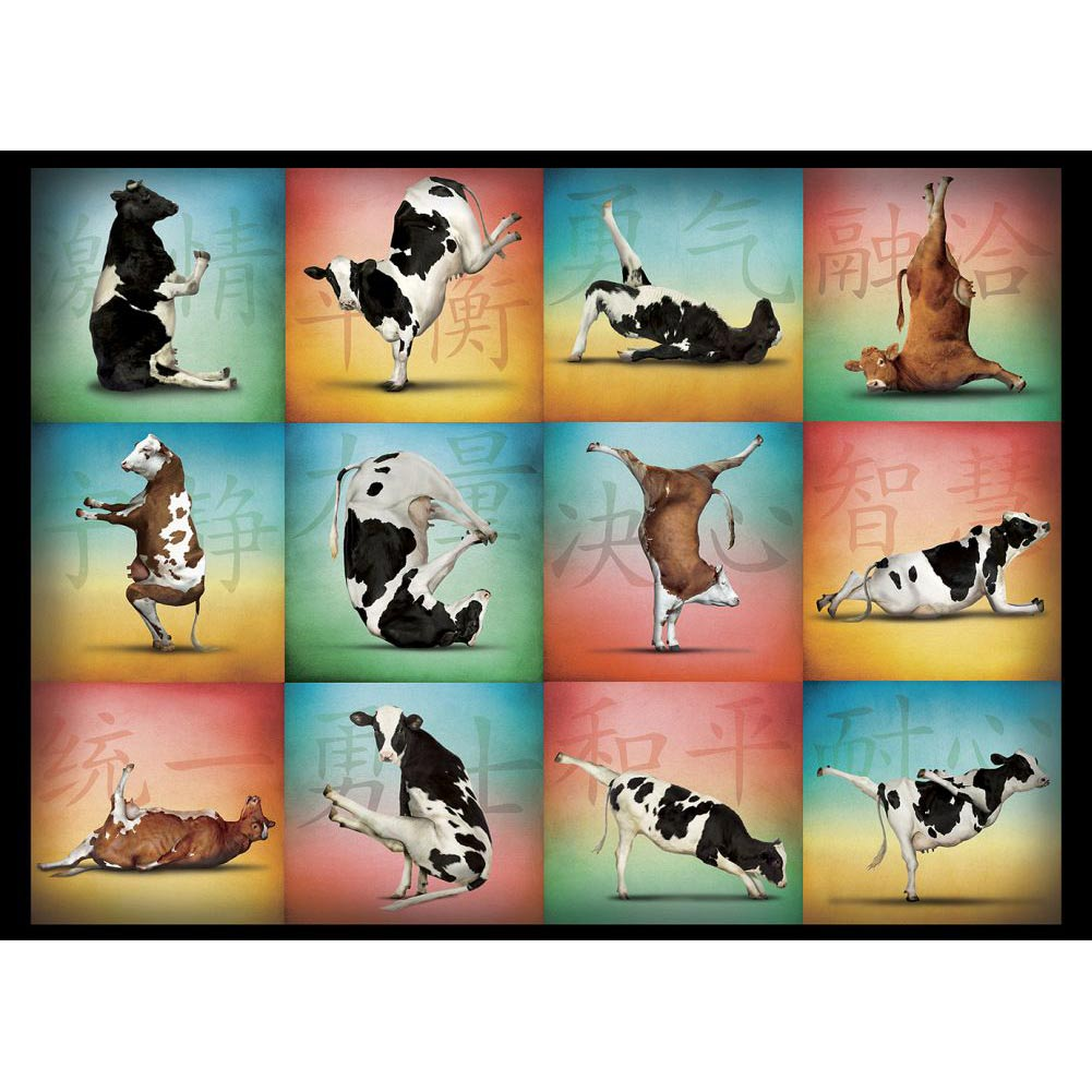 Best Cow Yoga 1000 Piece Puzzle You Can Buy