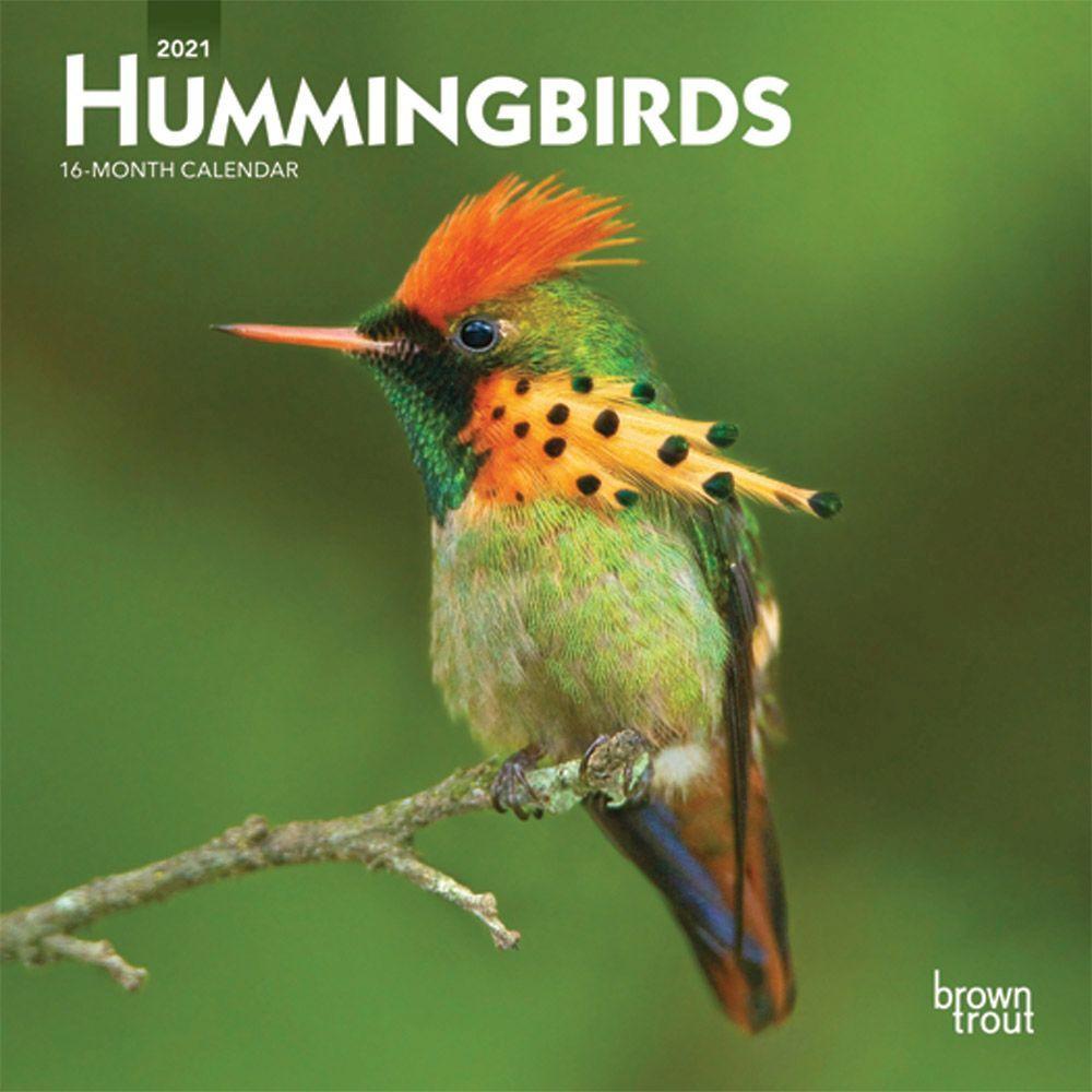 2021 Hummingbirds Mini Wall Calendar