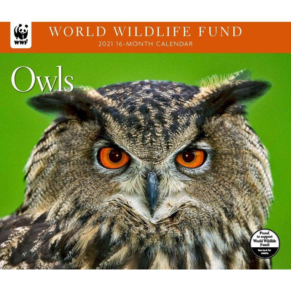 Owls WWF 2021 Wall Calendar