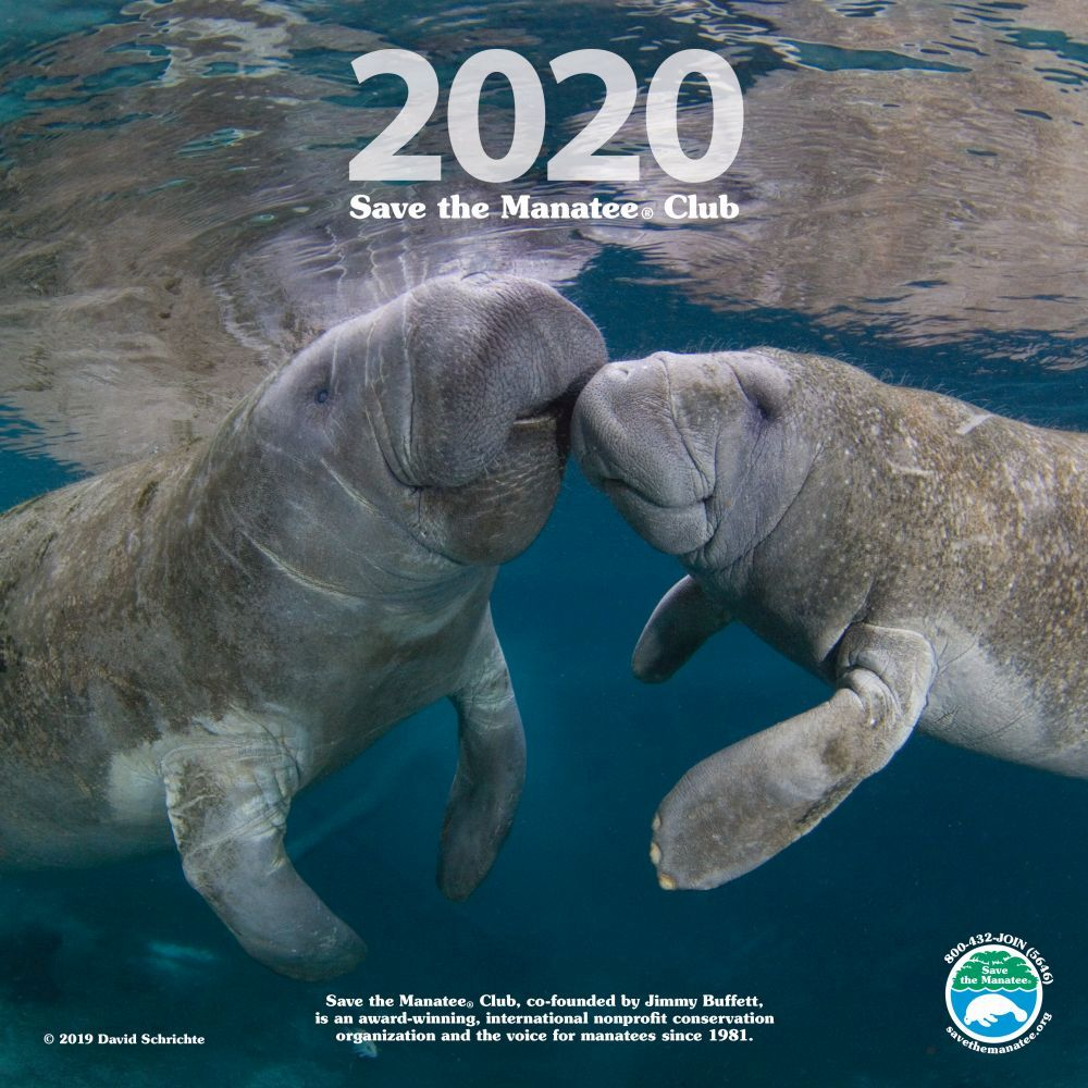 Save-the-Manatee-Wall-Calendar-1