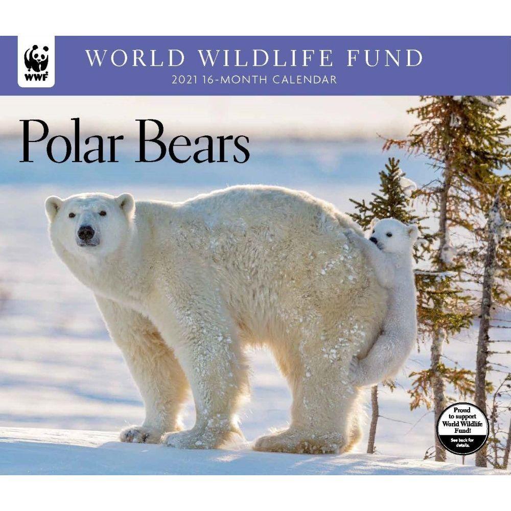 2021 Polar Bears WWF Wall Calendar