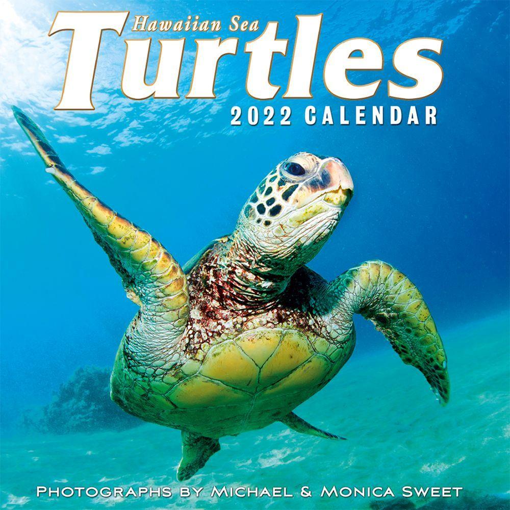 Hawaiian Sea Turtles 2022 Wall Calendar