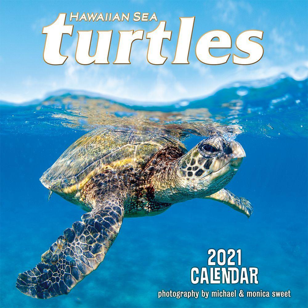 Hawaii Sea Turtles 2021 Wall Calendar