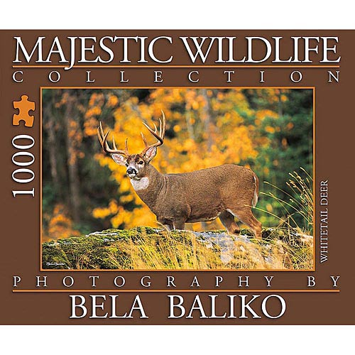 Best Majestic Wildlife Whitetail Deer 1000 Piece Puzzle You Can Buy