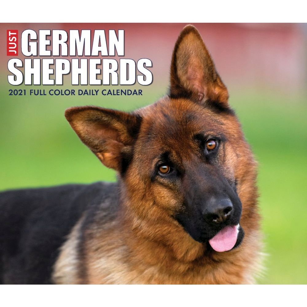 German Shepherds 2021 Desk Calendar
