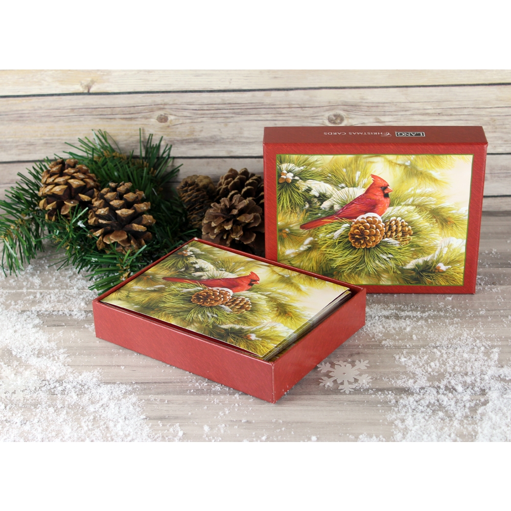 December-Dawn-Cardinal-Christmas-Cards-4