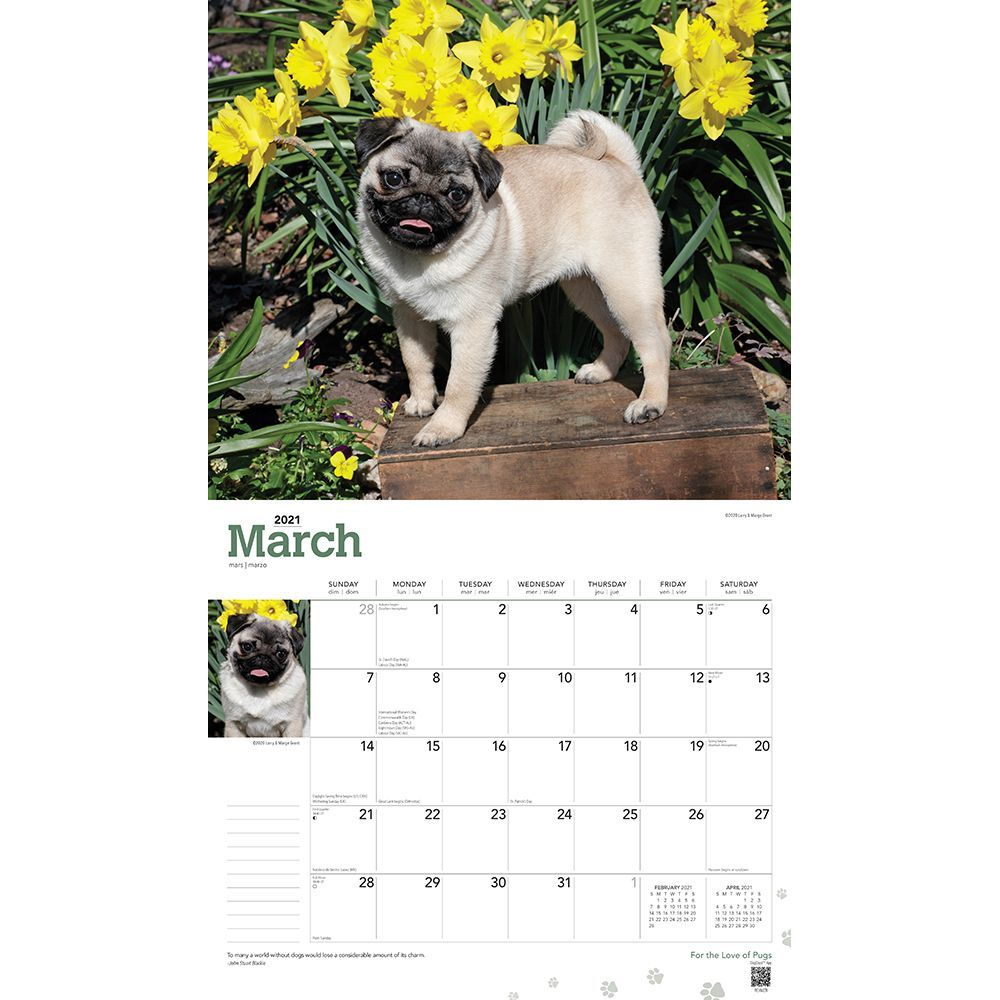 pugs-deluxe-wall-calendar-image-3