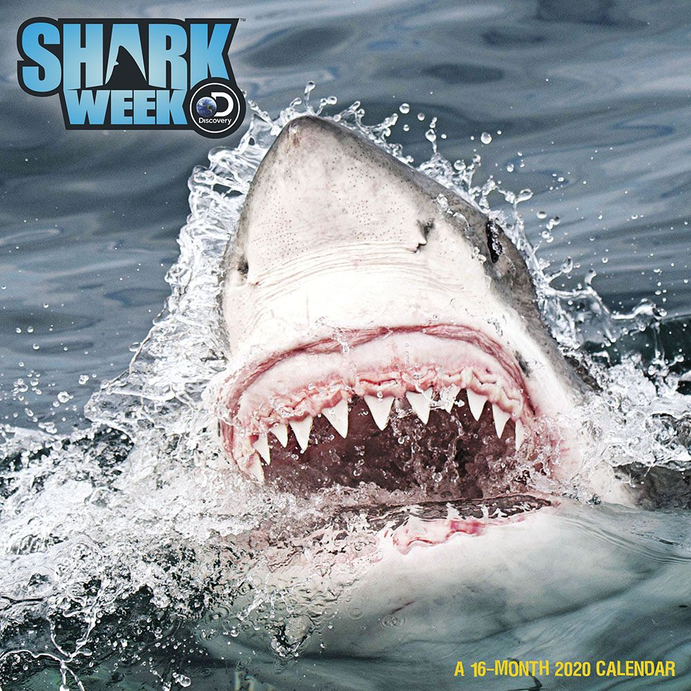 Shark-Week-Wall-Calendar-1