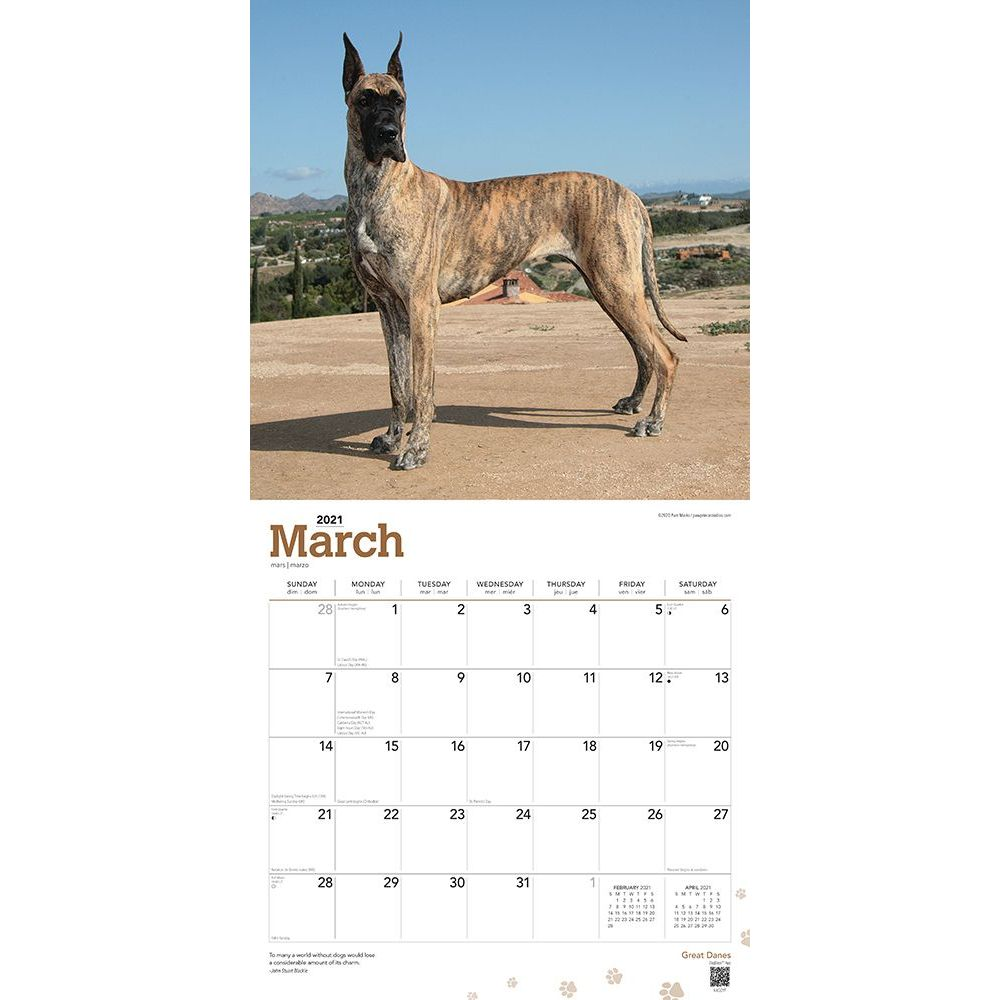 great-danes-wall-calendar-image-3