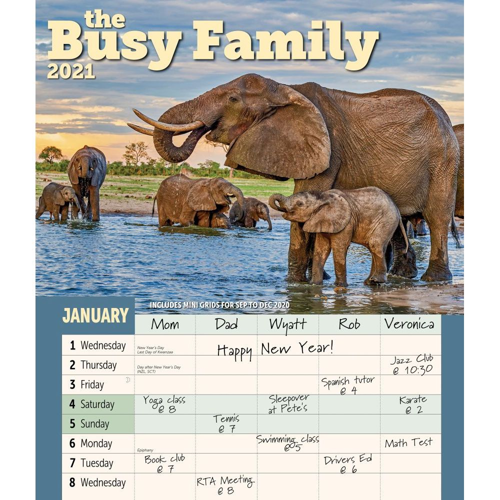 Busy Family 2021 Wall Calendar