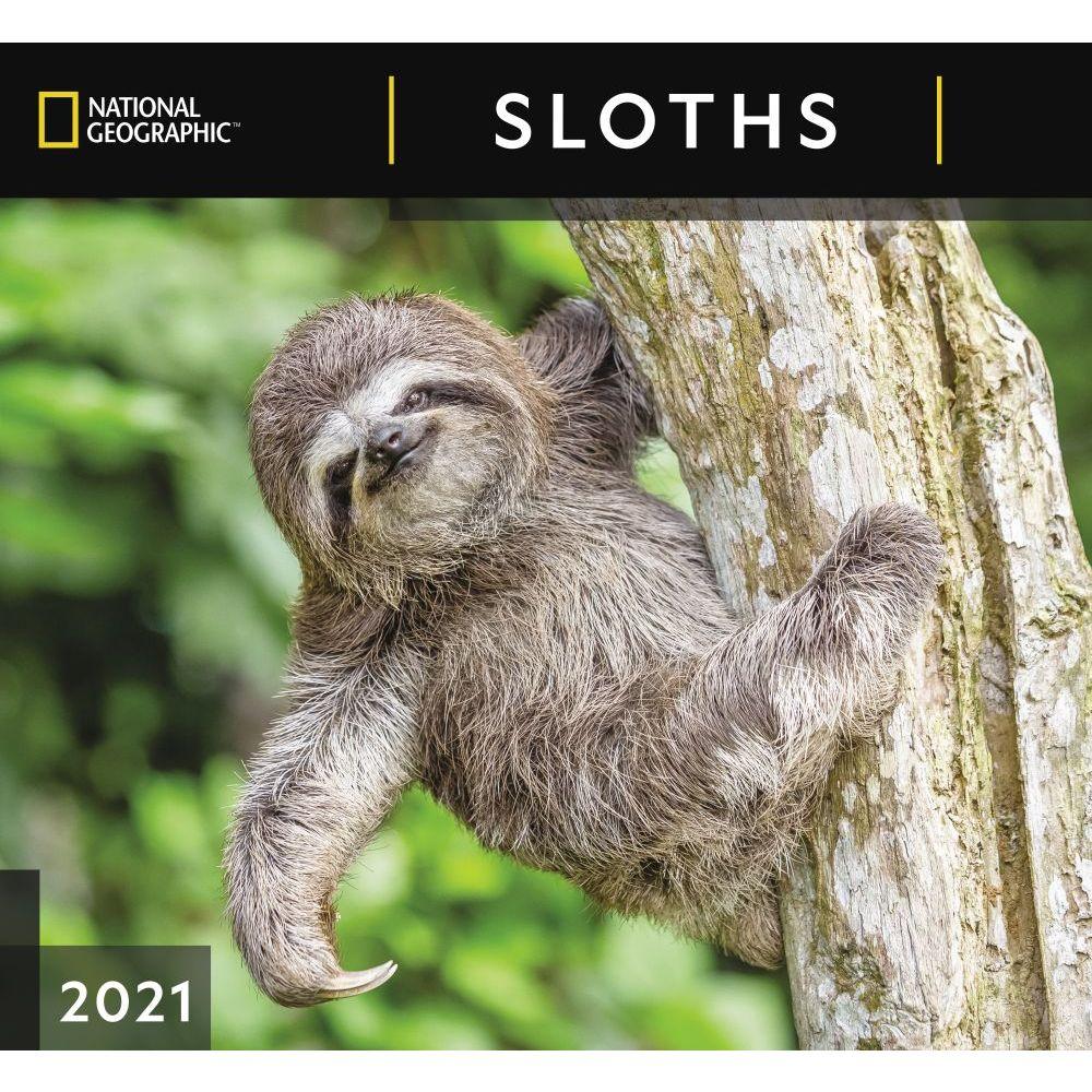2021 Sloths Wall Calendar