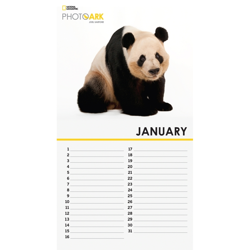 Photo-Ark-Mini-Wall-Calendar-3