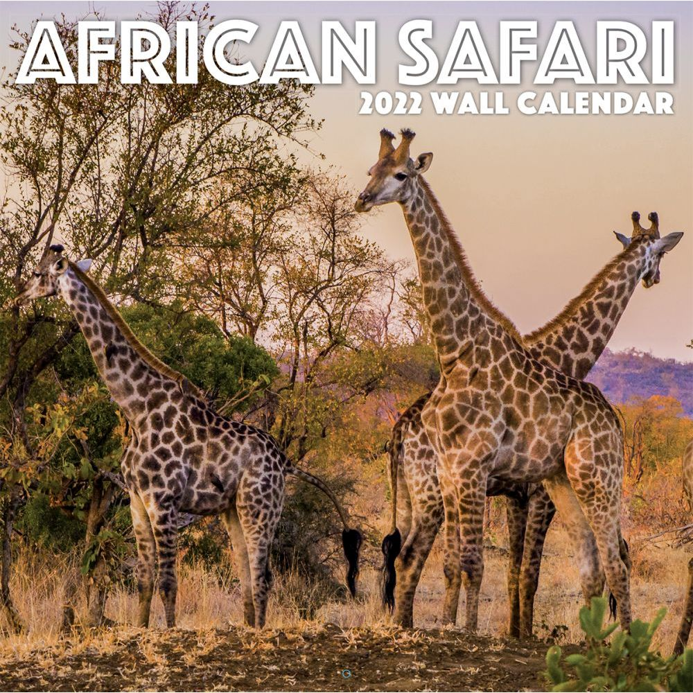 African Safari 2022 Wall Calendar