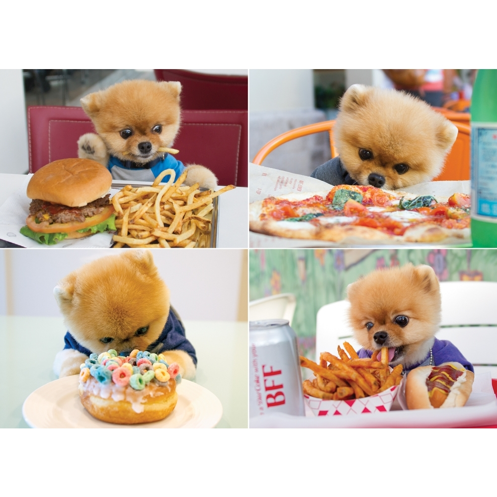 Best Jiffpom 1000 Piece Puzzle You Can Buy