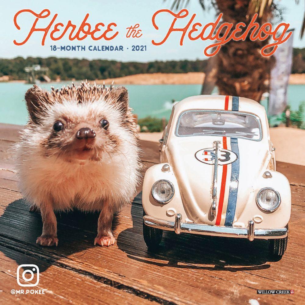 2021 Herbee the Hedgehog Mini Wall Calendar