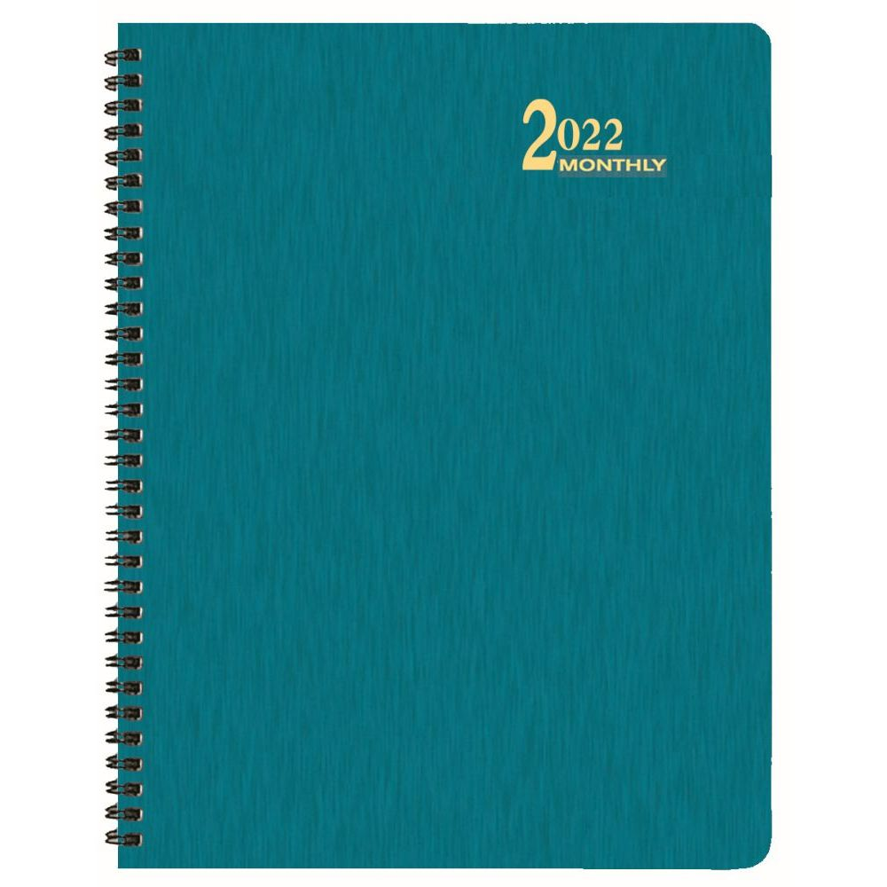 Shimmer 2022 Monthly Appointment Planner