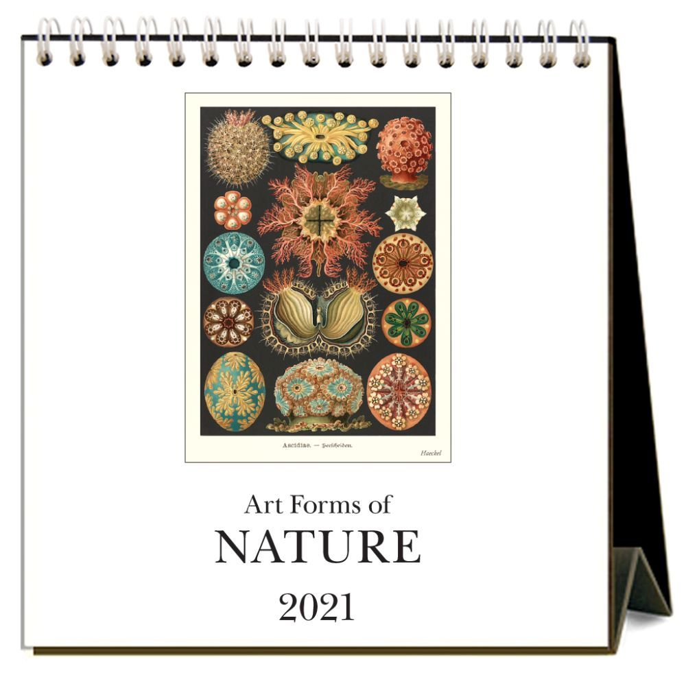 2021 Art Forms of Nature Easel Calendar
