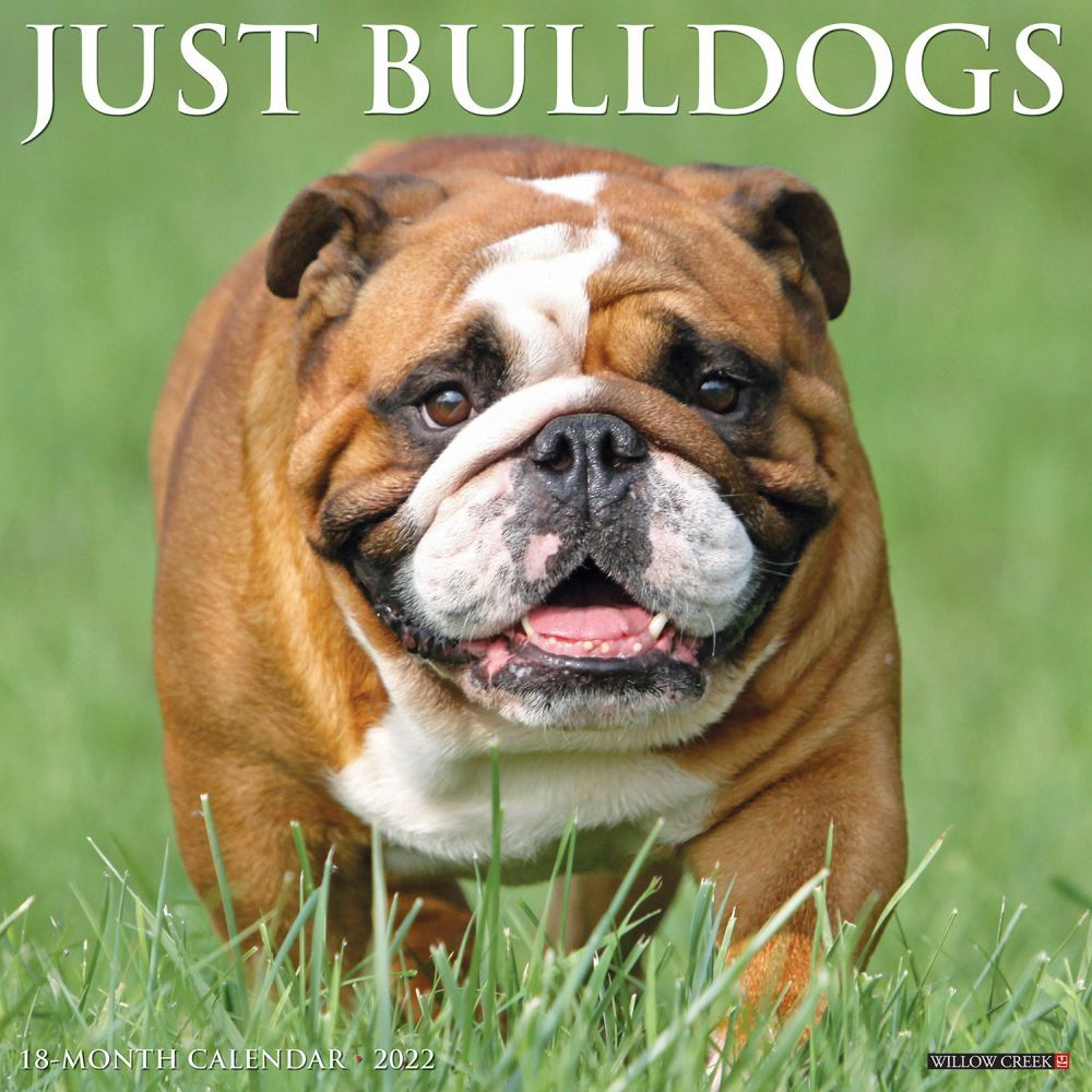 Just Bulldogs 2022 Wall Calendar