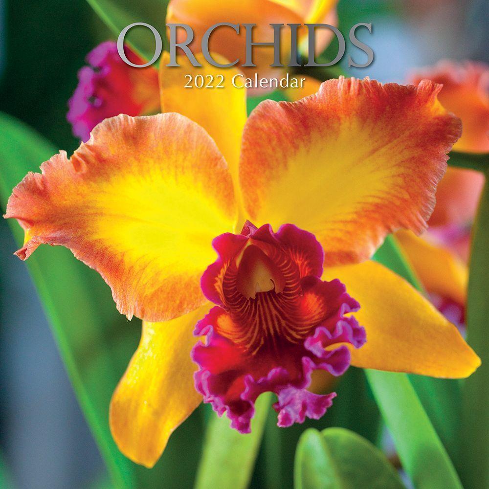 Orchids 2022 Wall Calendar