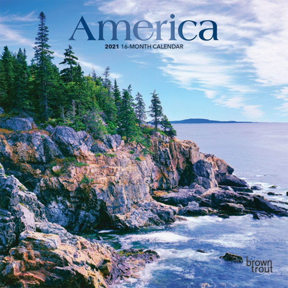 America 2021 Mini Wall Calendar