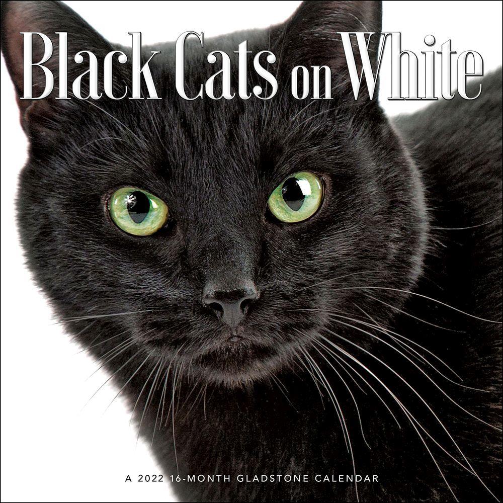Black Cats On White 2022 Wall Calendar