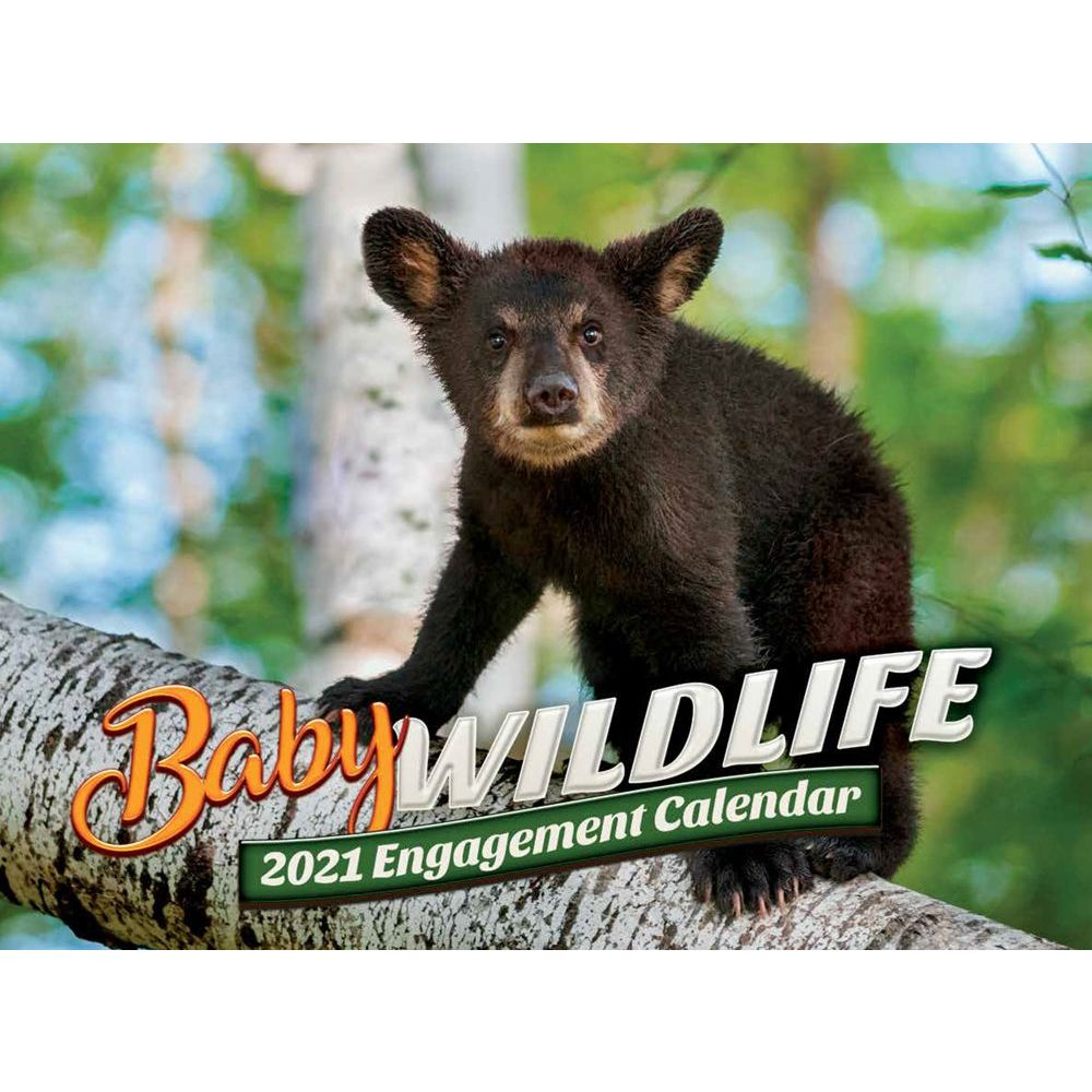 2021 Baby Wildlife Wall Calendar