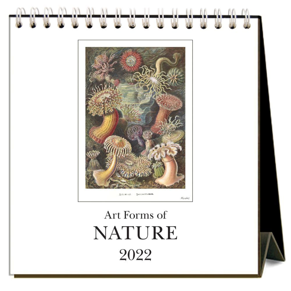 Art Forms of Nature 2022 Desk Calendar