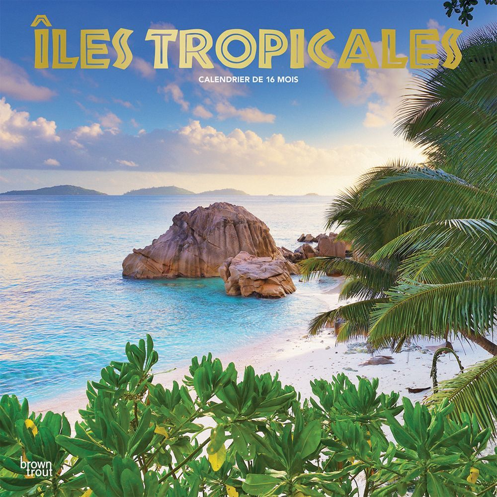 2021 Iles Tropicales Wall Calendar (French)