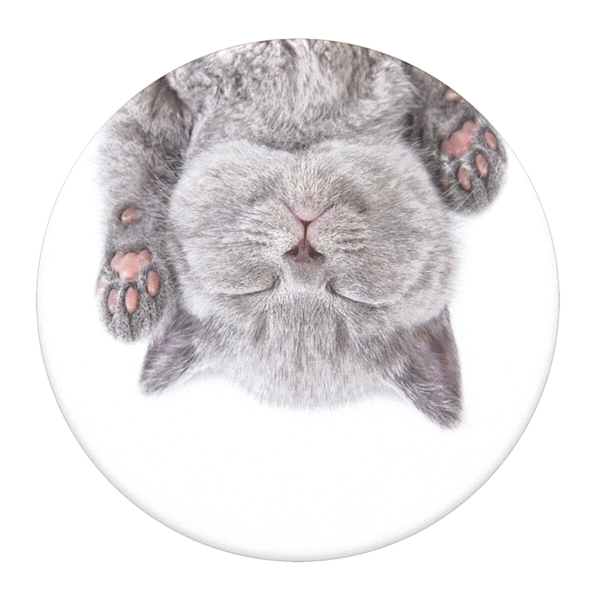 Cat-Nap-Popgrip-Main-Image
